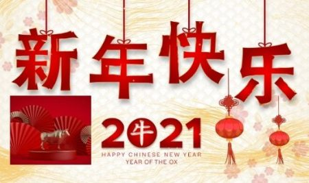 New Year New Language: Learning Chinese in the Year of the Ox
