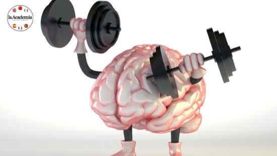 Learning a new language is like a weightlifting for the brain.